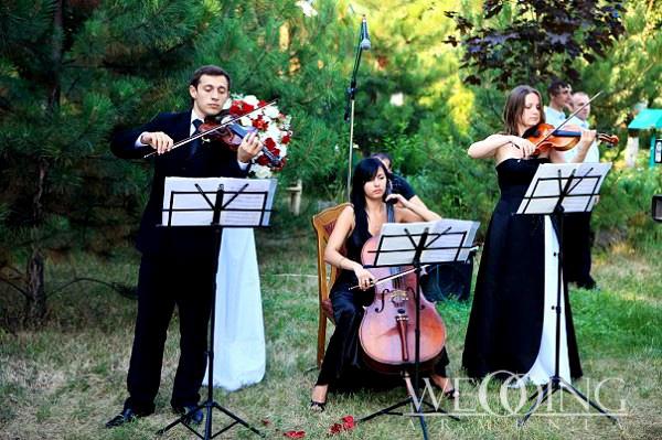 Живая музыка на свадьбу юбилей банкет
