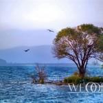 Свадьба на побережье – Берег моря или озера (13 of 29)