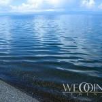 Свадьба на побережье – Берег моря или озера (24 of 29)