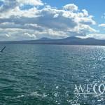 Свадьба на побережье – Берег моря или озера (26 of 29)